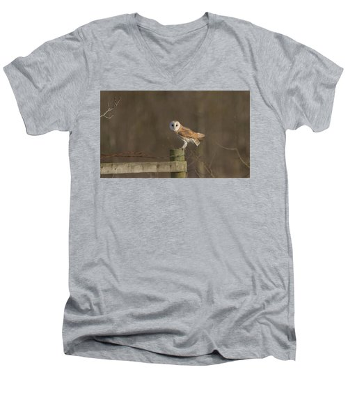 Barn Owl On Fence Men's V-Neck T-Shirt