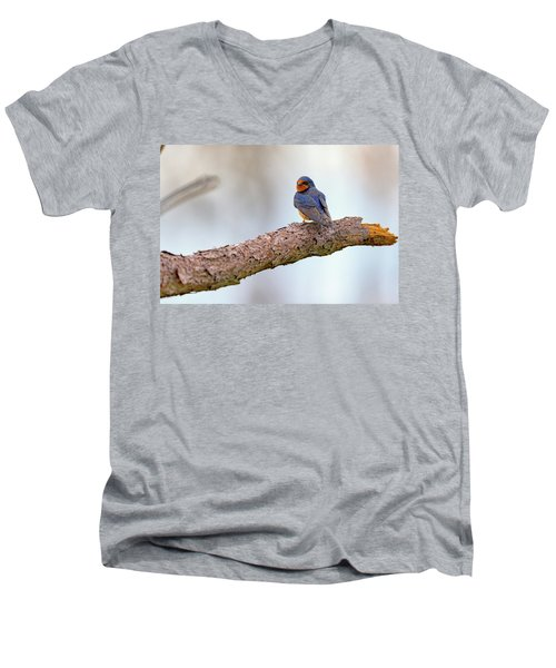 Barn Swallow On Assateague Island Men's V-Neck T-Shirt by Rick Berk
