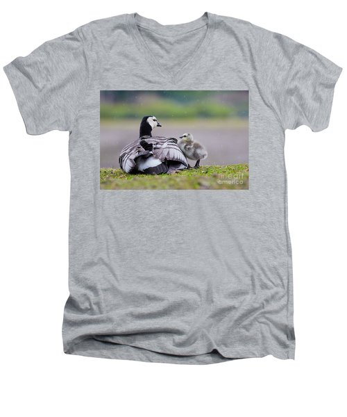 Barnacle Goose With Chick In The Rain Men's V-Neck T-Shirt