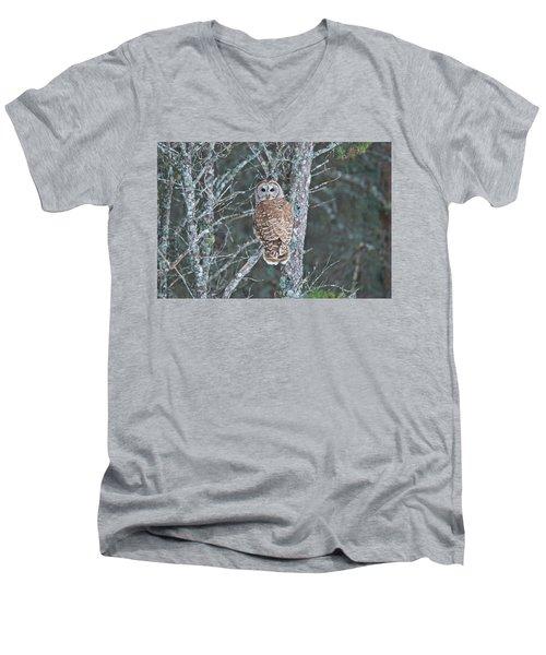 Barred Owl 1396 Men's V-Neck T-Shirt