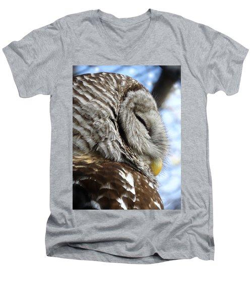 Barred Owl Beauty Men's V-Neck T-Shirt by Rebecca Overton