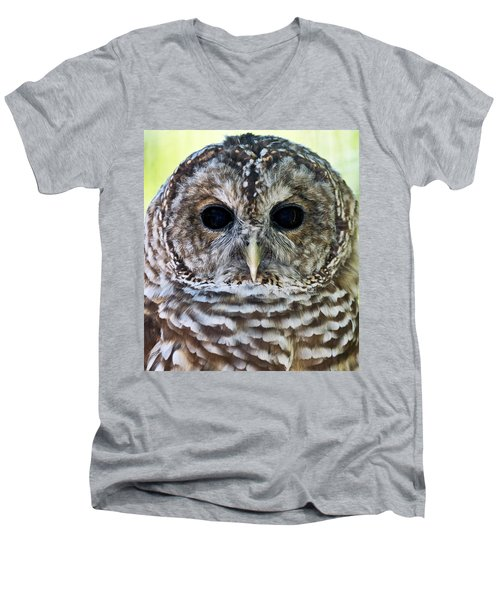 Barred Owl Closeup Men's V-Neck T-Shirt