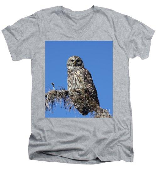 Barred Owl Portrait Men's V-Neck T-Shirt