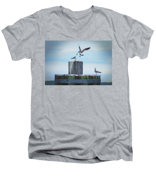 Battle Of The Gulls Men's V-Neck T-Shirt