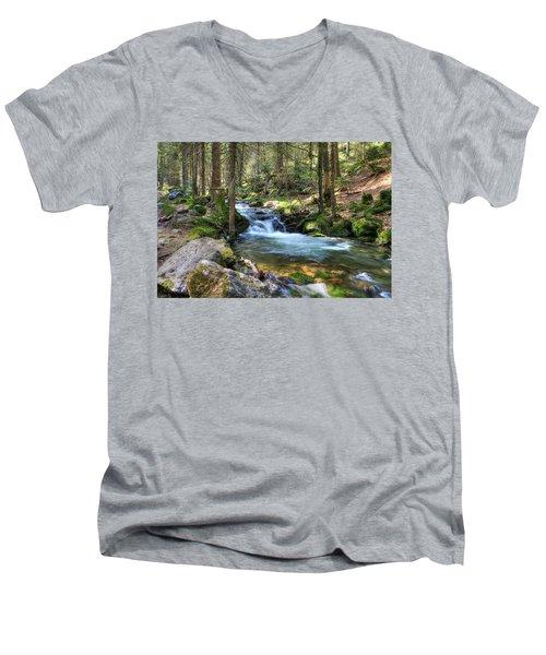 Bavarian Stream Men's V-Neck T-Shirt