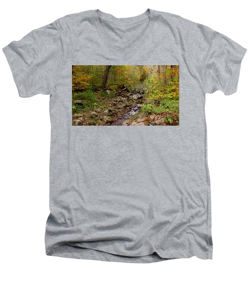 Baxter's Hollow II Men's V-Neck T-Shirt by Kimberly Mackowski