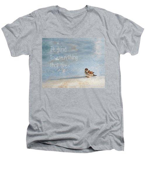 Be Kind Men's V-Neck T-Shirt