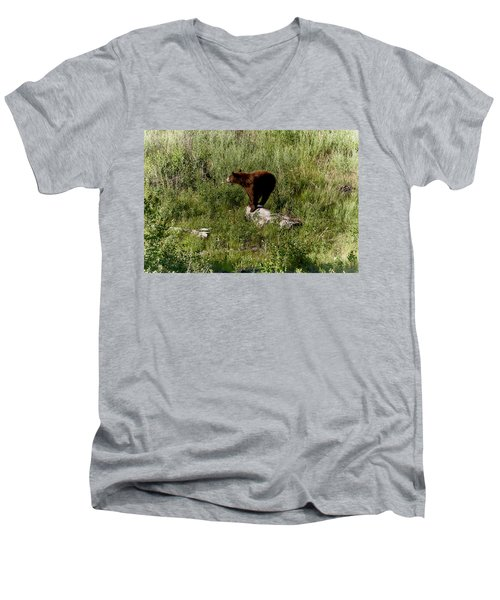 Bear2 Men's V-Neck T-Shirt