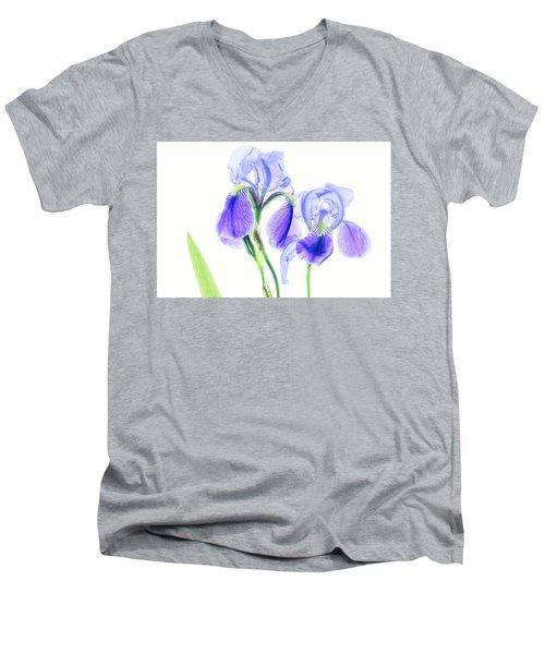 Bearded Iris Men's V-Neck T-Shirt by Robert FERD Frank