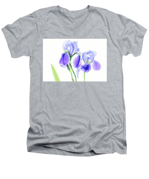 Bearded Iris Men's V-Neck T-Shirt