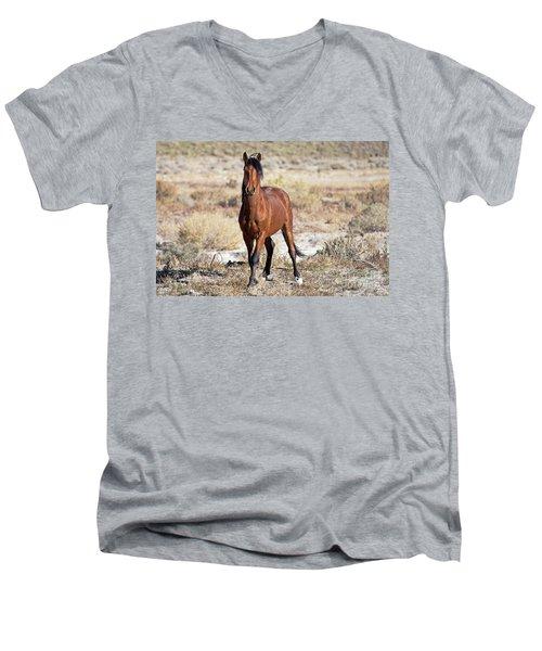 Beautiful Bay Men's V-Neck T-Shirt by Lula Adams