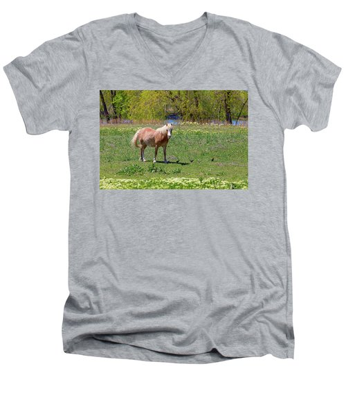 Beautiful Blond Horse And Four Little Birdies Men's V-Neck T-Shirt by James BO Insogna