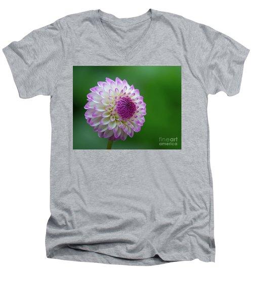 Beautiful Dahlia 1 Men's V-Neck T-Shirt