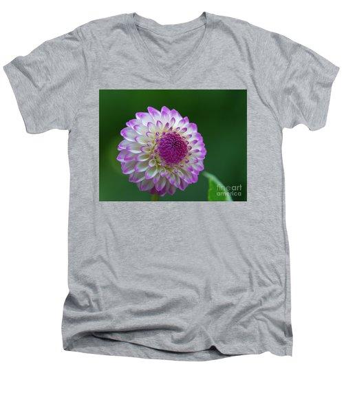 Beautiful Dahlia 2 Men's V-Neck T-Shirt