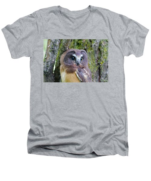 Beautiful Eyes Of A Saw-whet Owl Chick Men's V-Neck T-Shirt