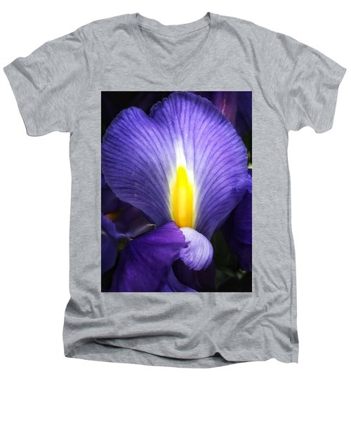 Beautiful Flame Men's V-Neck T-Shirt