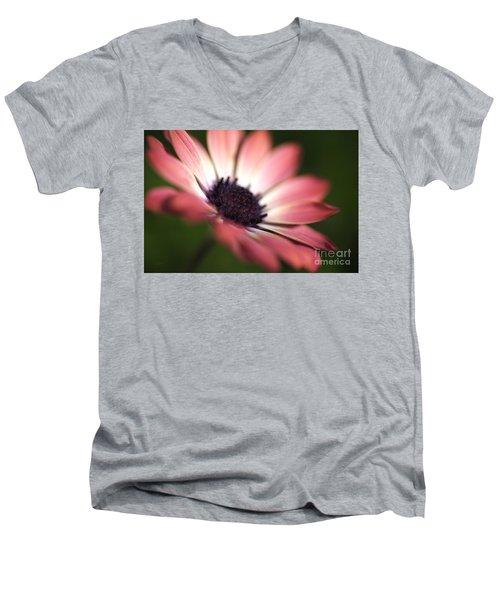 Beautiful Rich African Daisy Zion Red Flower Men's V-Neck T-Shirt