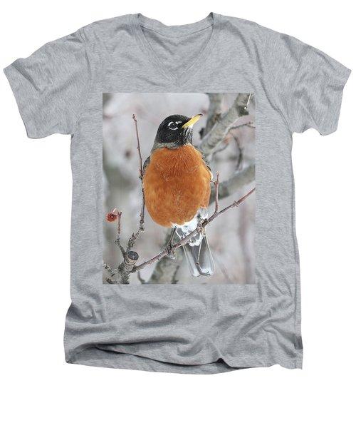 Beautiful Robin Men's V-Neck T-Shirt