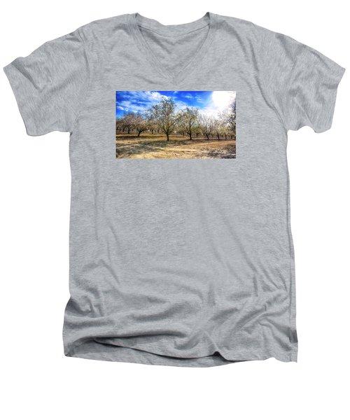 Beautiful Spring Garden  Men's V-Neck T-Shirt