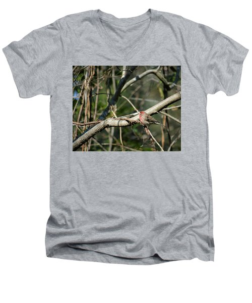 Beautiful Winter Day Men's V-Neck T-Shirt by Cathy Harper