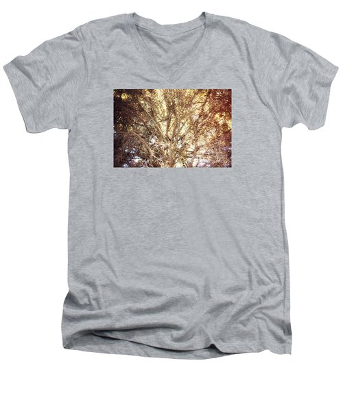 Beauty And The Branches Men's V-Neck T-Shirt by Janie Johnson