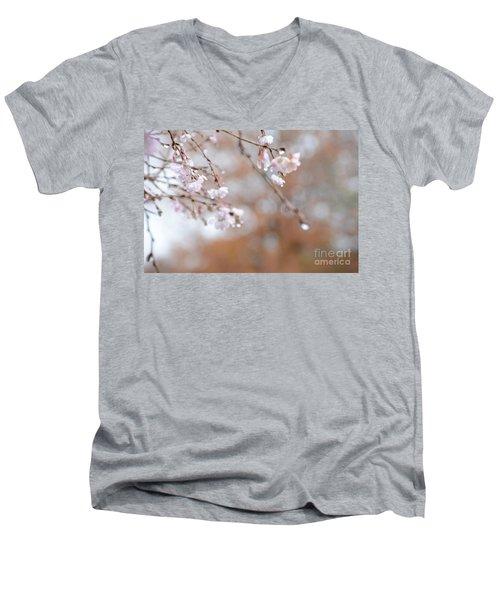 Beauty Is In The Eye Men's V-Neck T-Shirt