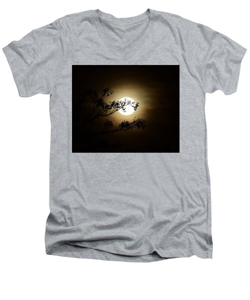Beauty Is Life Men's V-Neck T-Shirt
