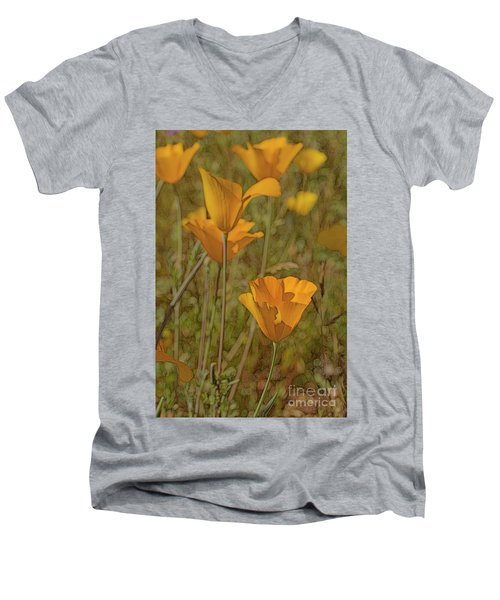 Beauty Surrounds Us Men's V-Neck T-Shirt