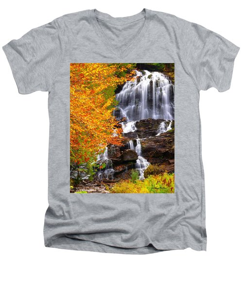 Beaver Brook Falls Men's V-Neck T-Shirt