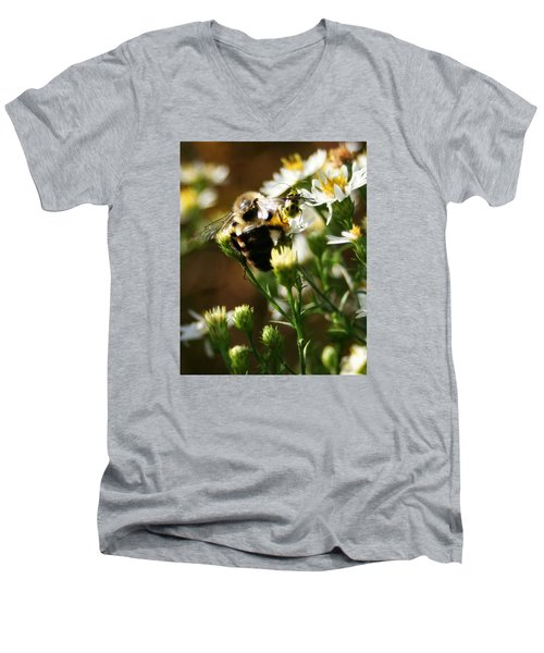 Bee And Spotted Cucumber Beetle On Aster Men's V-Neck T-Shirt