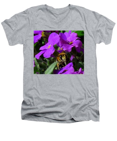Bee Feeding On Purple Flower Men's V-Neck T-Shirt by John Topman