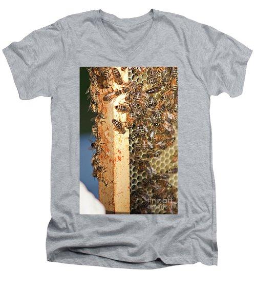 Bee Hive 4 Men's V-Neck T-Shirt by Janie Johnson