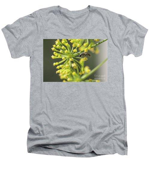 Bee Men's V-Neck T-Shirt by Jivko Nakev