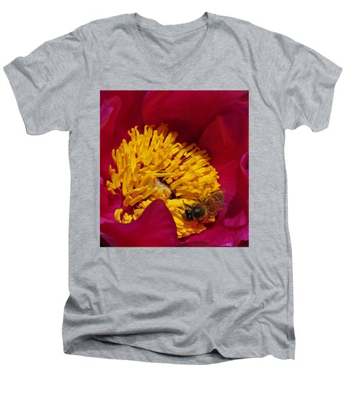 Bee On A Burgundy And Yellow Flower2 Men's V-Neck T-Shirt