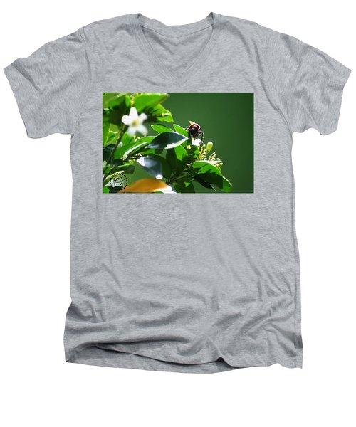 Bee On Jasmine Men's V-Neck T-Shirt by Shelley Overton