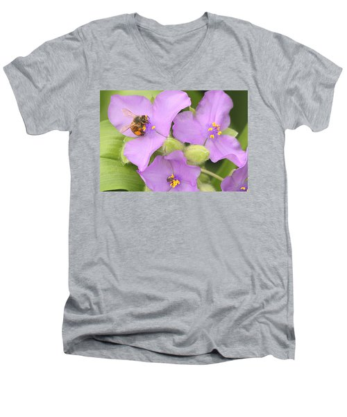 Men's V-Neck T-Shirt featuring the photograph Bee On Purple Spiderwort by Sheila Brown