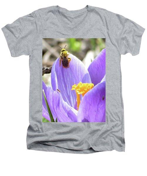 Bee Pollen Men's V-Neck T-Shirt