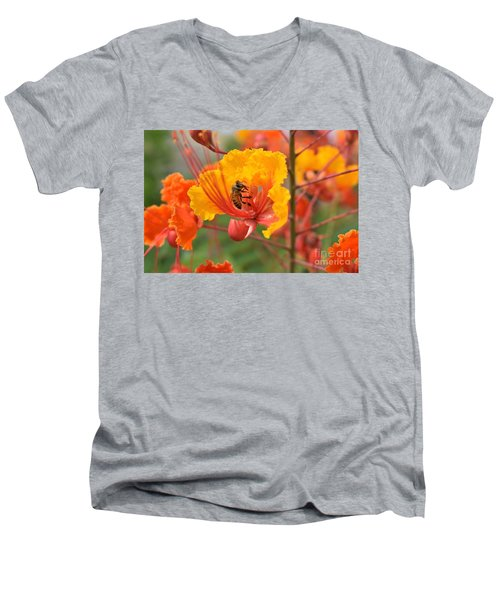Bee Pollinating Bird Of Paradise Men's V-Neck T-Shirt