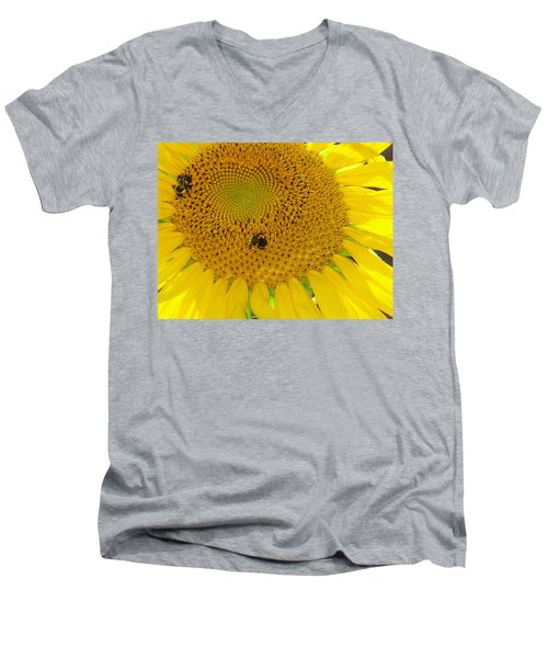 Men's V-Neck T-Shirt featuring the photograph Bees Share A Sunflower by Sandi OReilly