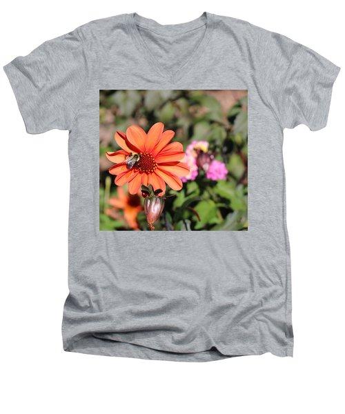 Bees-y Day Men's V-Neck T-Shirt