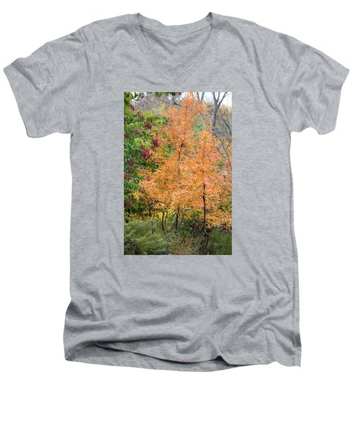 Men's V-Neck T-Shirt featuring the photograph Before The Fall by Deborah  Crew-Johnson