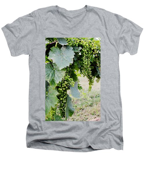 Before The Harvest Men's V-Neck T-Shirt