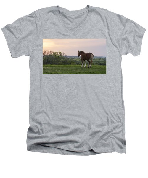 Belgian At Sunset Men's V-Neck T-Shirt