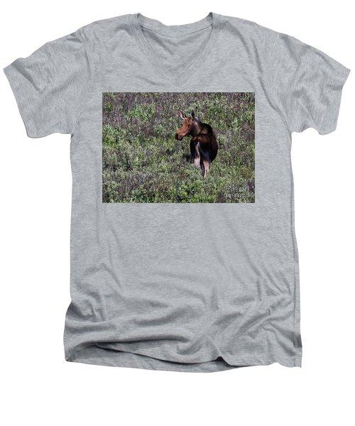 Belly Deep In Sage Men's V-Neck T-Shirt
