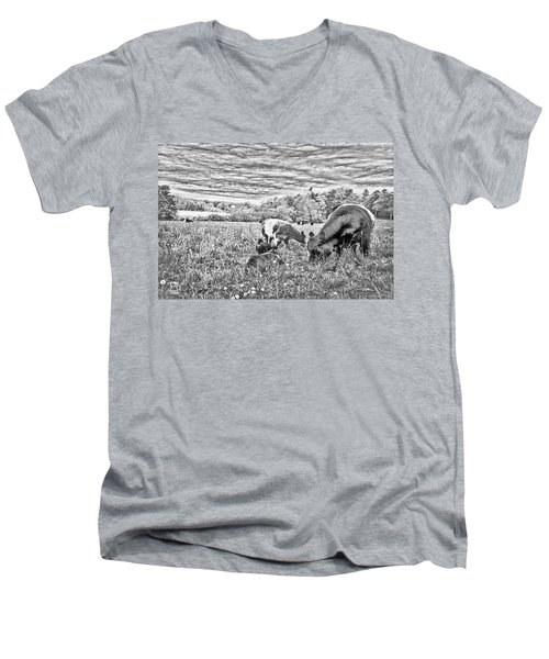 Men's V-Neck T-Shirt featuring the digital art Belted Galloway Beef Cattle by Daniel Hebard