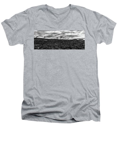 Bending To The Wind Men's V-Neck T-Shirt