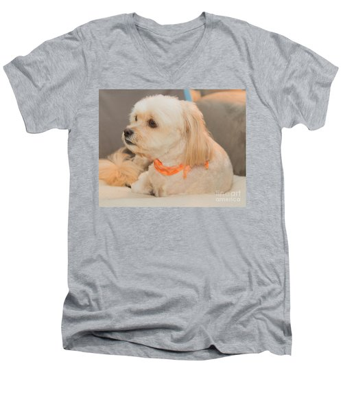 Benji On The Look Out Men's V-Neck T-Shirt
