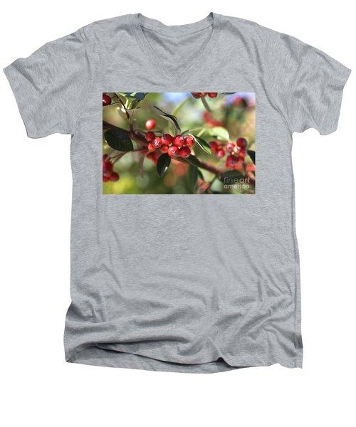 Berry Delight Men's V-Neck T-Shirt