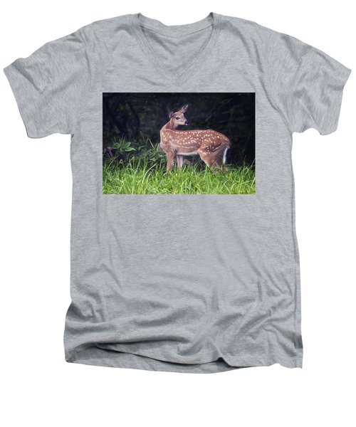 Big Bambi Men's V-Neck T-Shirt