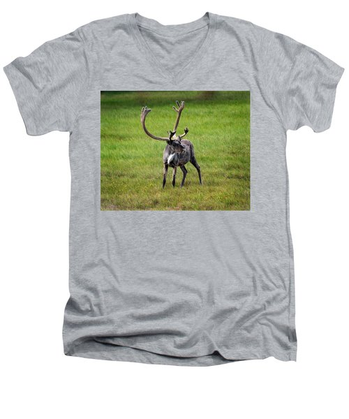 Big Horn Men's V-Neck T-Shirt